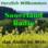 Sauerland Radio