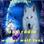 wolfs-radio