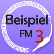 BeispielFM 3
