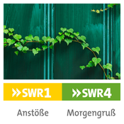 SWR1 BW - Anstöße